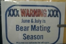 Bear Mating Season